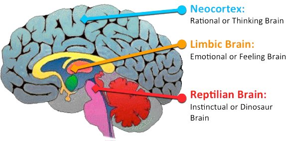 predictive dialer lizard brain