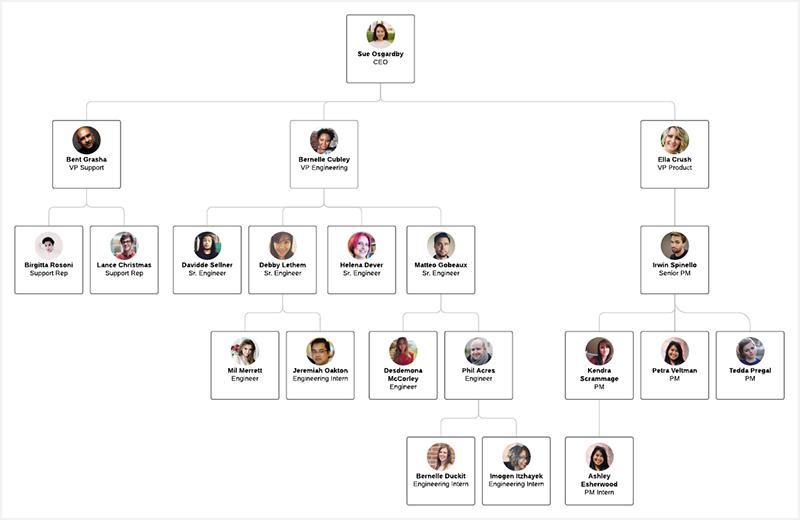 company-role-chart-1